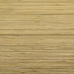 Palm Linen