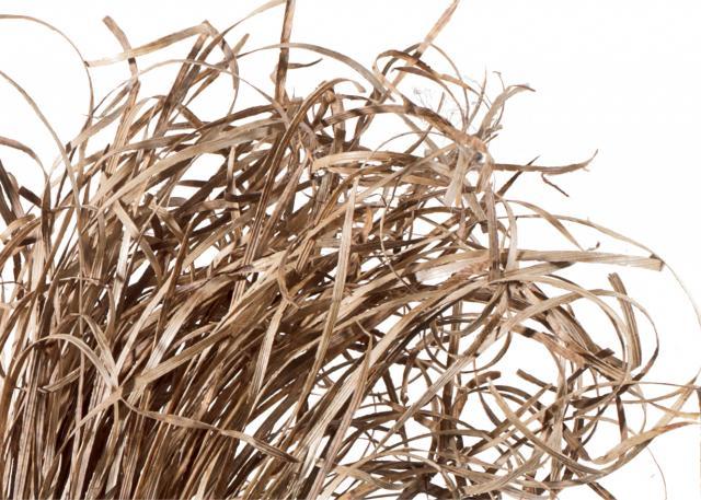 fiber-bamboo-husk.jpg
