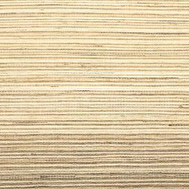 swatch-WL364-santalucia-cypress-edit-web.jpg