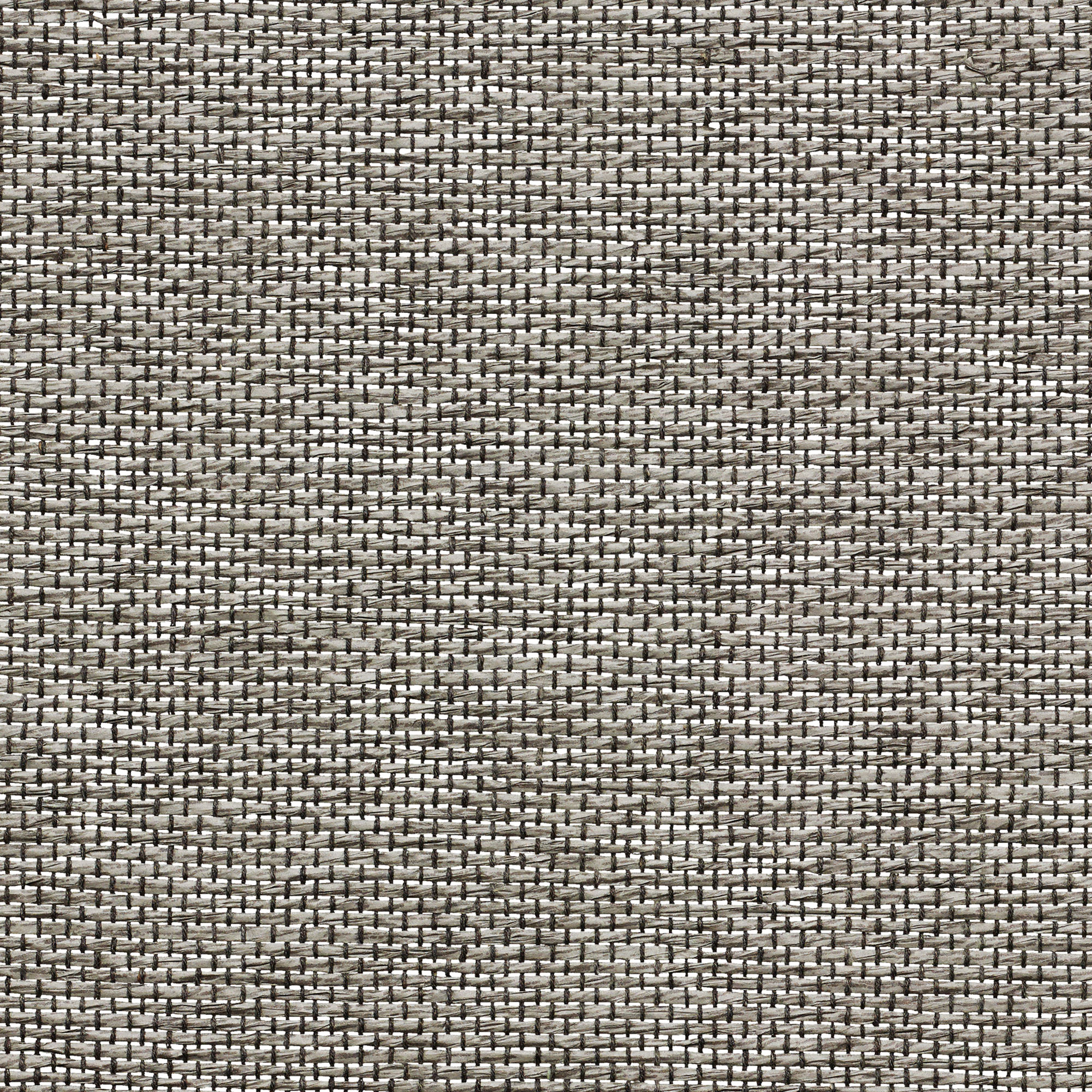 swatch-PE600-60-clarity-steady-graphite-web.jpg